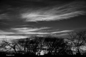 Wispy Clouds in Black n White
