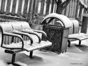 Snowy Seating