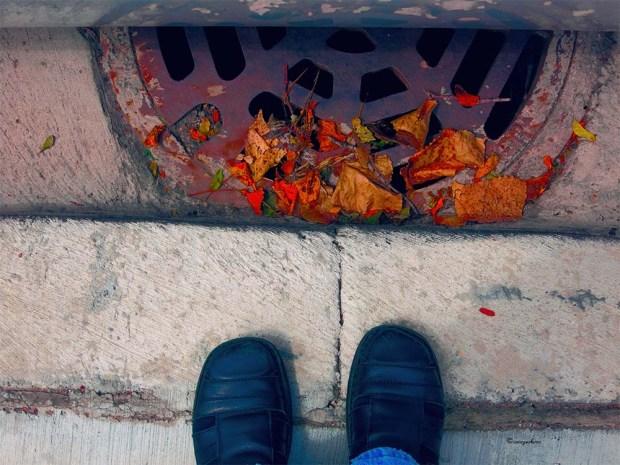 Weekly Photo Challenge Beneath Your Feet