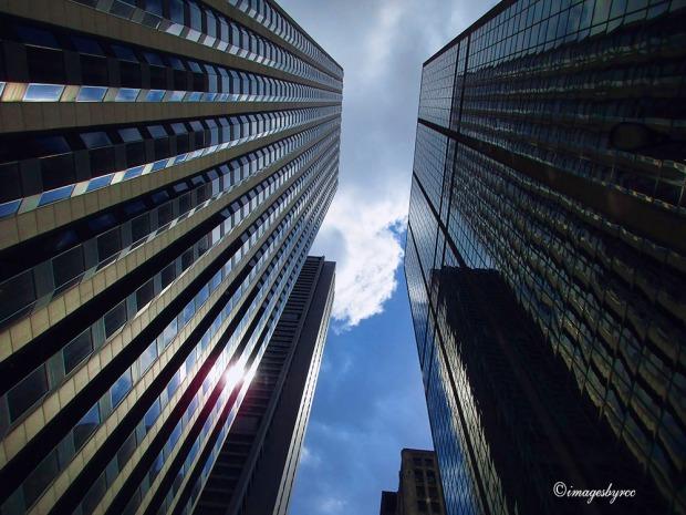 Weekly Photo Challenge Looking Up